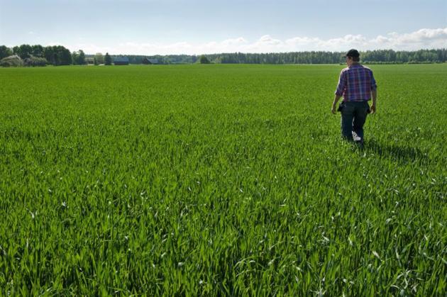 Digitalisering i lantbruket ger mindre algblomning